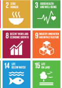 Sustainable Development Goals Awareness Campaign