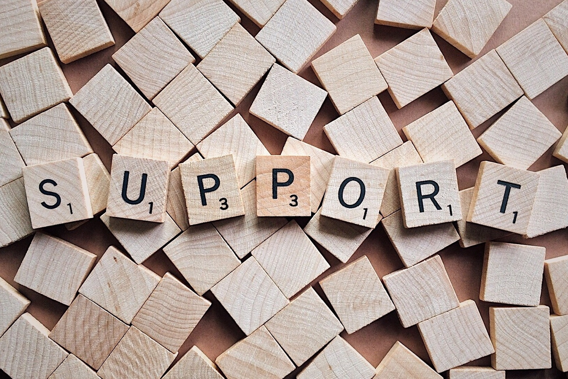 support-2355701 1920